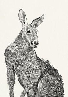 Red Kangaroo - Giclée Print – Marini Ferlazzo - Art for Wildlife Animal Sketches, Animal Drawings, Art Drawings, Pencil Drawings, Art And Illustration, Kangaroo Illustration, Australian Animals, Australian Artists, Australia Tattoo