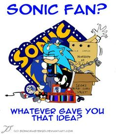 Sonic fan? Whatever gave you that idea? Lol if you look you can see she has sonic in a box behind her XD