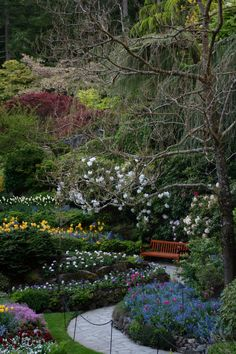 Butchart Gardens, Victoria, BC. One of the most beautiful places I've ever seen.