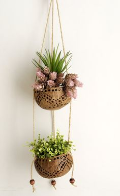 """Plawanature 2 Tier Perforated Coconut Shell Hanging Planter Pot. Diameter 4 Inch. The 2 tier hanging planter made from 100% natural material, pots made from perforated coconut to allow drainage. Fasten with a rope and ornamental with wooden beads. The gap height of each pot about 8"""", which is enough to plant variance of plant. When not in use, can be folded without waste of storage space. Product Detail - Available for outdoor and indoor decoration. Multi function as hanging tree pot…"""