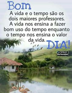 Bom Dia! Good Afternoon, Good Morning, E Farm, Morning Blessings, Blog Page, Messages, Humor, Motivation, Julia