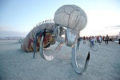 Fishbug burningman 2009