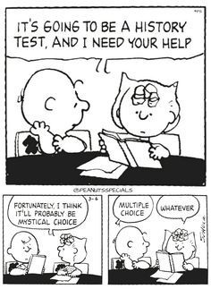First Appearance: March 6th, 1989 #peanutsspecials #ps #pnts #schulz #charliebrown #sally #history #test #help #mysticalchoice #multiplechoice #whatever www.peanutsspecials.com