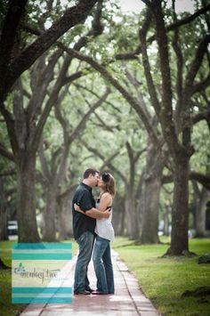 One of the most beautiful places in Houston... South Boulevard.  www.monkey-tree.com