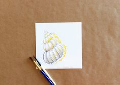 Original Gouache White and Cream Wentletrap Seashell Painting by Amalia Hillmann of The Eclectic Illustrator Tactile Texture, Seashell Painting, Bristol Board, Beach Landscape, Beautiful Lines, Gouache Painting, Keep It Cleaner, Love Art, Ticket