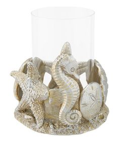 Beachcombers Coastal Life Gold Shell Candle Holder   zulily