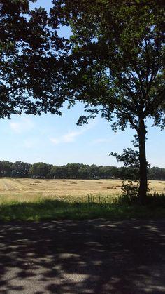 T Is hier net Zuid-Frankrijk.... #Westerwolde