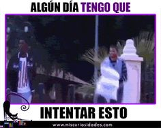 Guerra de almohadas Funny Images, Funny Pictures, Amazing Gifs, Meme Comics, Just Smile, No Worries, You And I, I Laughed, Comedy