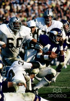 Minnesota Vikings running back (44) Chuck Foreman is pursued by Oakland Raiders defensive tackle (60) Otis Sistrunk