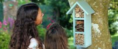 How to build a bee hotel | Wickes.co.uk