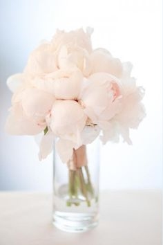 blush peonies those were my wedding bouquet flower! Blush Peonies, White Peonies, Blush Pink, Blush Flowers, Pink Roses, Peonies Bouquet, Flower Bouquets, White Flowers, Blush Color