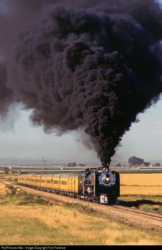 Net Photo: UP 8444 Union Pacific Steam at Kersey, Colorado by Tom Farence Train Tracks, Train Rides, Old Steam Train, Railroad Pictures, Railroad History, Union Pacific Railroad, Railroad Photography, Train Pictures, Old Trains