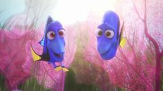 Finding Dory- Dory's parents Jenny and Charloe