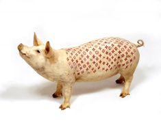 Wim Delvoye, l'artiste connu pour tatouer des cochons