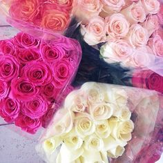 Roses #roses #flowers #pink roses
