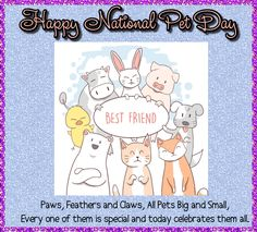 Happy National Pet Day for all pets big and small. Free online All Pets Are Special ecards on National Pet Day Happy Animals, Cute Animals, National Pet Day, Day Wishes, Cute Mugs, Love Pet, Name Cards, Card Sizes, The Funny