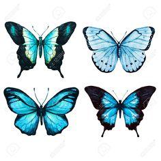Schöne Rasterbild Mit Schönen Aquarell Schmetterlinge Lizenzfreie Fotos, Bilder Und Stock Fotografie. Image 47381031.