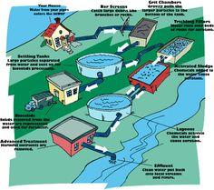 bakterier vatten