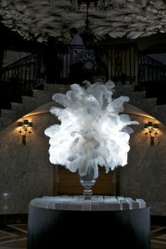 Ostrich feather display with upllighting