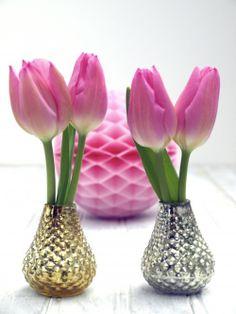 Delightful tulips.