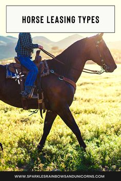 If you are going to be leasing a horse do you know what kind of lease you are planning to do? There are a few different kinds of horse leases. Be sure to know which one is right for your situation before you start looking for a lease. Read the post to learn all about the different types. Cheers! #horselease #horseleasing #leasingahorse Free Horses, Baby Horses, Ride 2, Riding Lessons, All About Horses, Different Kinds, Do You Know What, Free Training, Horse Riding