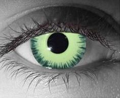 Always wanted a pair of cat eye contacts, SO COOL Custom Contact Lenses, Fashion Contact Lenses, Black Contact Lenses, Natural Contact Lenses, Cat Eye Contacts, Colored Eye Contacts, Halloween Contacts, Cat Eye Colors, Fotografia