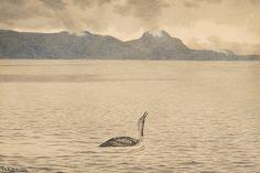 The Athenaeum - Screams (Theodor Severin Kittelsen - ) Theodore Kittelsen, Most Popular Artists, Sea Birds, 2d Art, Nature Paintings, Troll, Sculpture Art, Norway, Fairy Tales