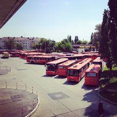 Autobusiště v Bratislavě :)
