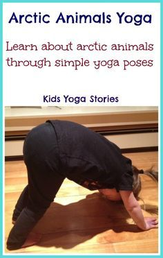 Learn about Arctic Animals through books and simple yoga poses for kids (indoors or outdoors) - Kids Yoga Stories