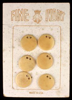 ButtonArtMuseum.com - Antique Fine Vegetable Ivory Sequin Trim Buttons ON Original Store Card