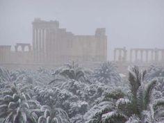 Snow in Palmyra in 2010 :-))