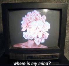 ~ Mind television.