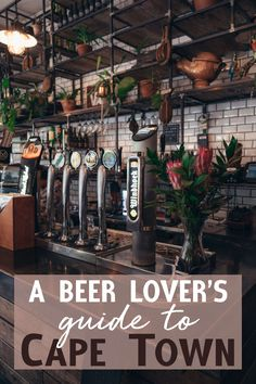 A Beer Lover's Guide to Cape Town, South Africa