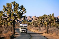 California Image - Motor home, Joshua Tree National Park - Lonely Planet