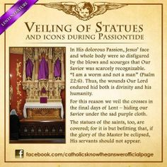 Get Daily Meditations on the Stations of the Cross | Catholic Cravings