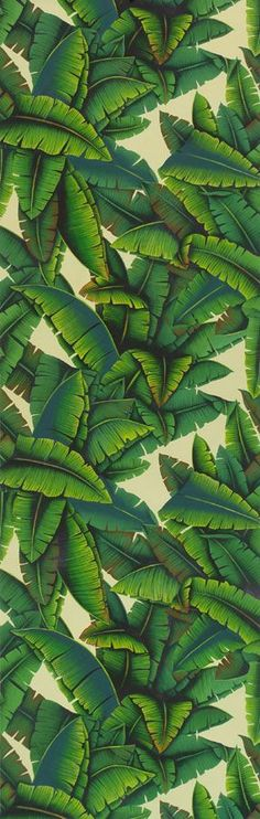 Palms Papier-peint De Gournay Miami/Palm Beach sub tropical chic Motif Tropical, Tropical Pattern, Tropical Design, Tropical Birds, Tropical Leaves, Deco Floral, Motif Floral, Surface Design, Textures Patterns