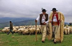 Shepards in Poland living a good life full of traditions and beauty in nature. The same way like in Romania. Transylvania Romania, Aot Characters, International Festival, Schaefer, Spiritual Practices, People Of The World, Eastern Europe, Sheep, Life Is Good