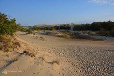 Lots of dune climbing footprints at Jockey's Ridge
