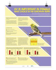 Scientific Poster on Behance