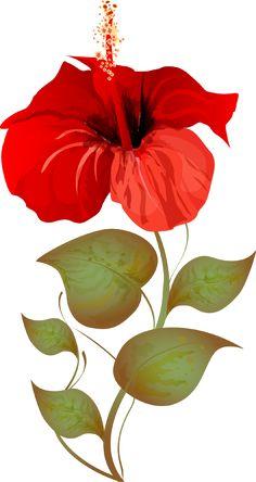 Grab This Free Summer Flower Clip Art: Hibiscus