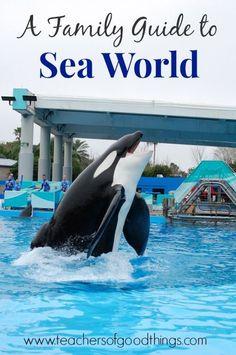 A Family Guide to Sea World www.teachersofgoodthings.com
