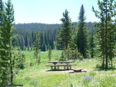 New camping review of the Meadows Campground on Rabbit Ears Pass near Steamboat Springs. This is a high elevation campground on the edge of a beautiful wildflower meadow.  http://www.campoutcolorado.com/meadows-campground-camping-review-rabbit-ears/