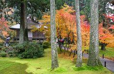 Kyoto Travel: Sanzenin Temple (40 min outside Kyoto, hot springs too)