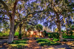 If you're looking for a beautiful, quiet place to spend some time outdoors with the family during your Orlando, Florida, vacation, the Bok Tower Gardens is the perfect place to be. Located a few minutes away from Orlando, this beautiful estate features lovely, well-tended gardens of palms, oaks, pines, and seasonal flowering plants, a historic 1930s Mediterranean-style mansion, a library, and a 205-foot Singing Tower carillon of Neo-Gothic and Art Deco design. Listen to some carillon music…