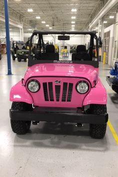 12 Roxor Custom Colors Wraps Ideas Custom Color Offroad Cars For Sale