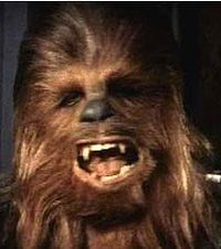 What do people think of Chewbacca? See opinions and rankings about Chewbacca across various lists and topics. Star Wars Halloween, Star Wars Episode Iv, Episode Vii, Fantasy Races, The Empire Strikes Back, Chewbacca, Awkward Moments, Bigfoot, Geek Stuff