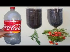 Início - YouTube Organic Gardening, Make It Yourself, Bottle, Tips, Youtube, Packaging, Vertical Vegetable Gardens, Small Vegetable Gardens, Gardening Tips