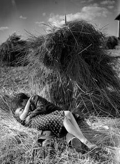 Teuvo Tulio: Laulu tulipunaisesta kukasta (1938)