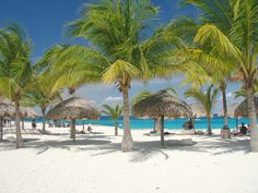 Chankanaab National Park in Cozumel, Mexico. It's a must when we go to Mexico and it is more amazing every time!