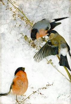 "petitpoulailler: ""art-and-things-of-beauty: 1885 Bruno Liljefors (Swedish; - Bullfinches, oil on canvas, 33 x cm "" Art And Illustration, Inspiration Artistique, Bullfinch, Winter Landscape, Wildlife Art, Animal Paintings, Bird Art, Bird Feathers, Pet Birds"